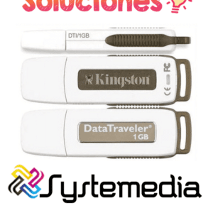 USB Kingston 1GB